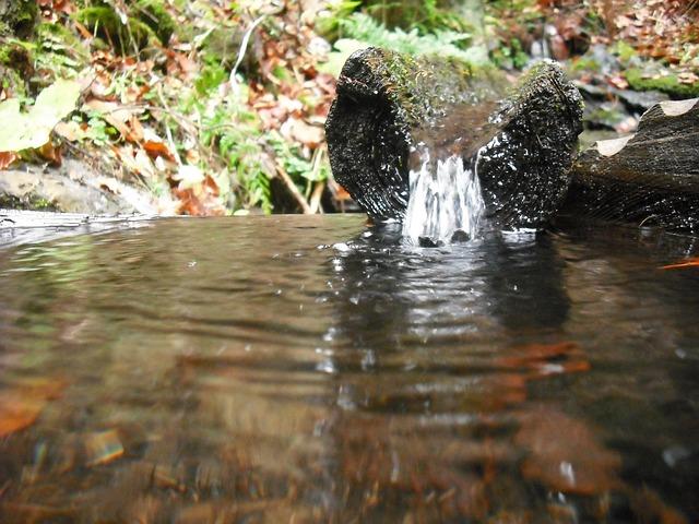 voda ve studánce